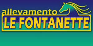 banner home bottom 2-3 fontanette generico