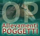 banner comunicati top3 OP