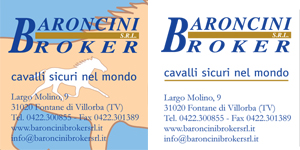 www.baroncinibrokersrl.it
