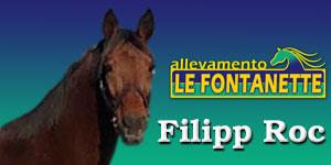 banner come associarsi top 3 FLIPROC