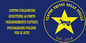 banner home bottom 1-4 stelle
